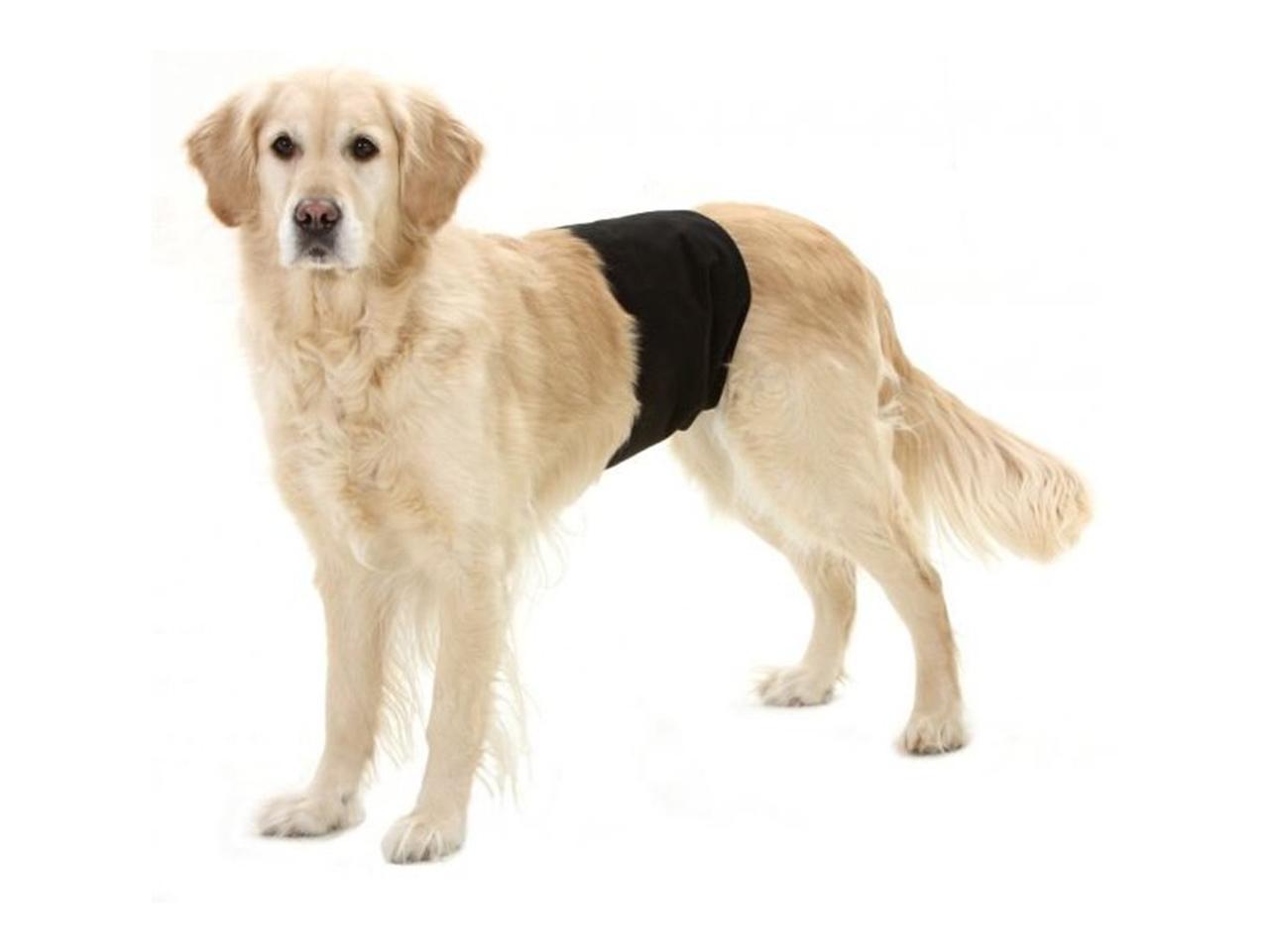 Inkontinenční kalhoty pro psy
