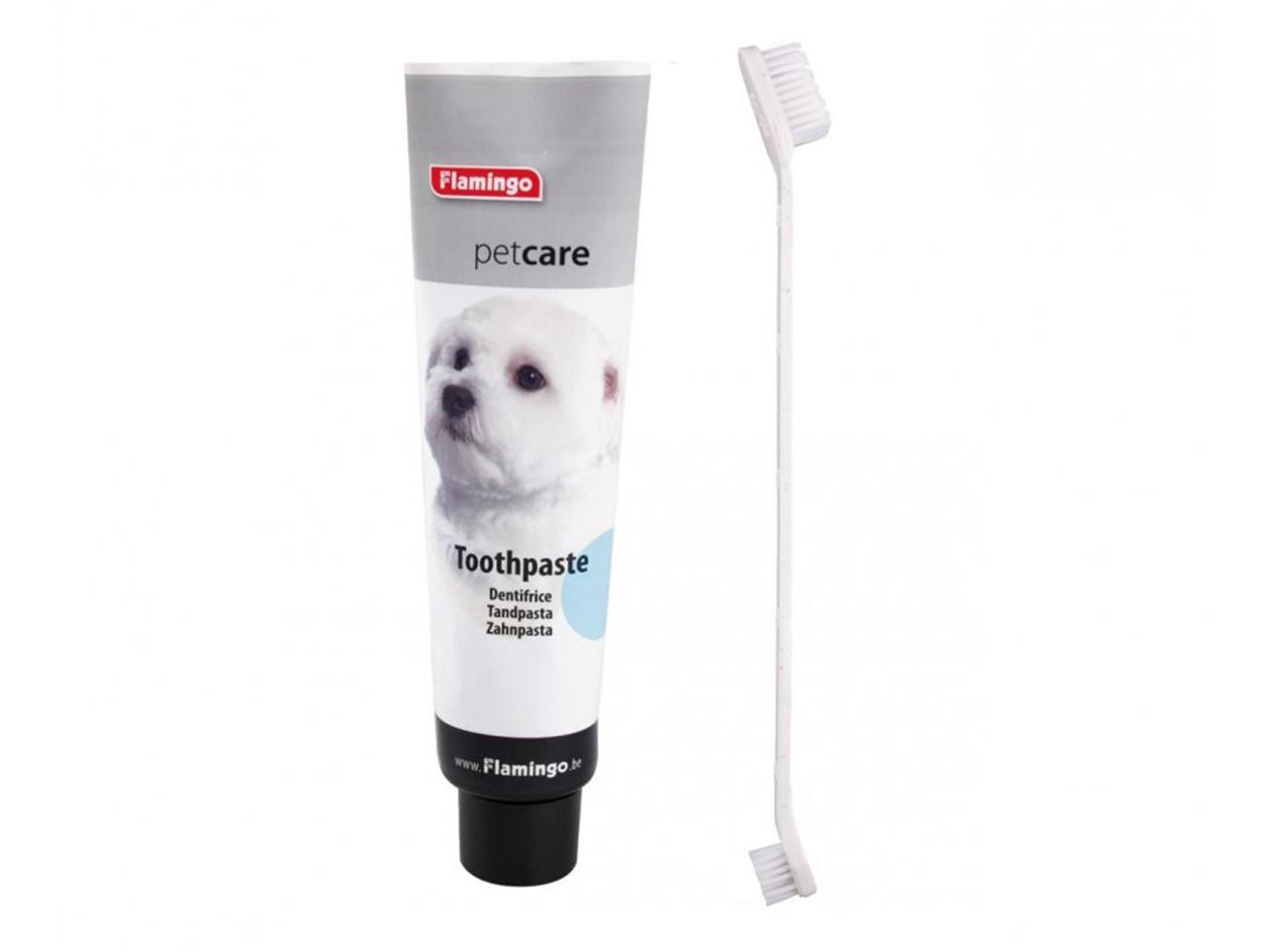 Péče o zuby u psa