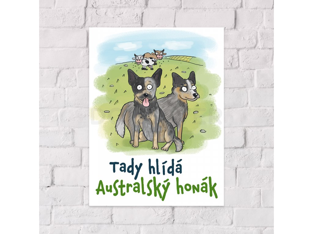 australsky honacky pes