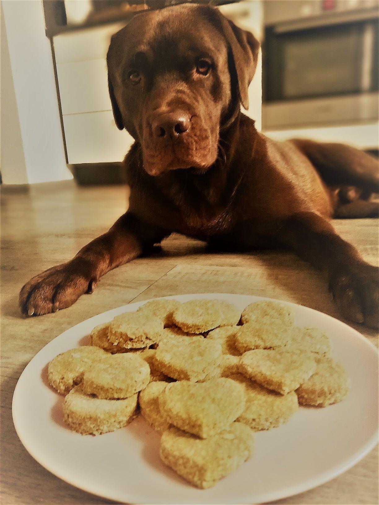 Sušenky pro chlupáče po kterých se jen olízne