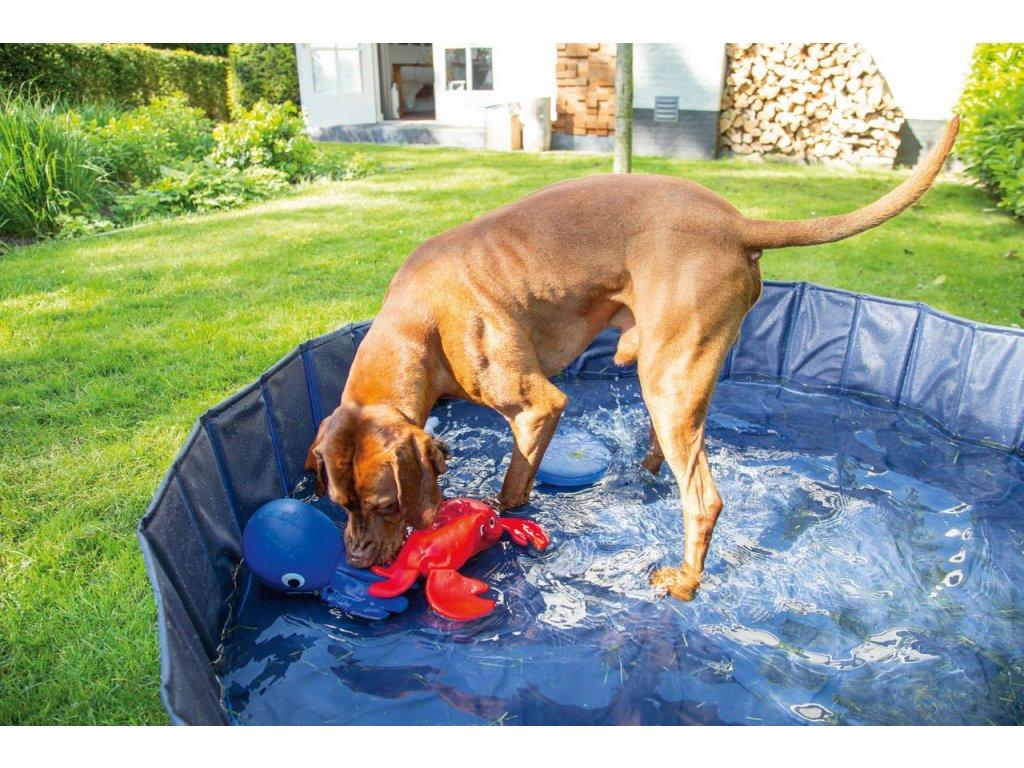 Karlie bazén pro psy 80 x 20 cm, modrý/černý