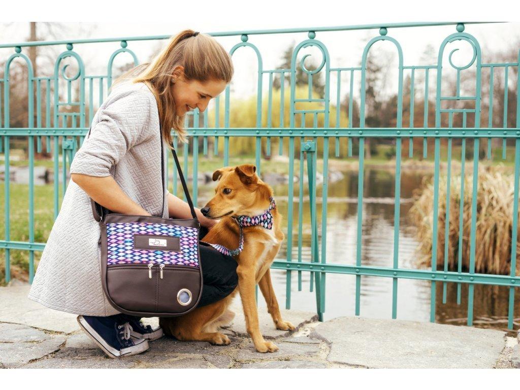 1409 babylon sada venceni vycvik psa psi obojek voditko stylovy krasny ruzoy hnedy fialovy kabelka pamlskovnik vycvikova vesta sukne