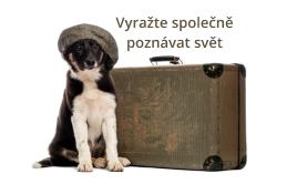Cestování se psy