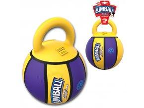 28369 gigwi jumball basketball mic s rukojeti zluto fialovy 20cm