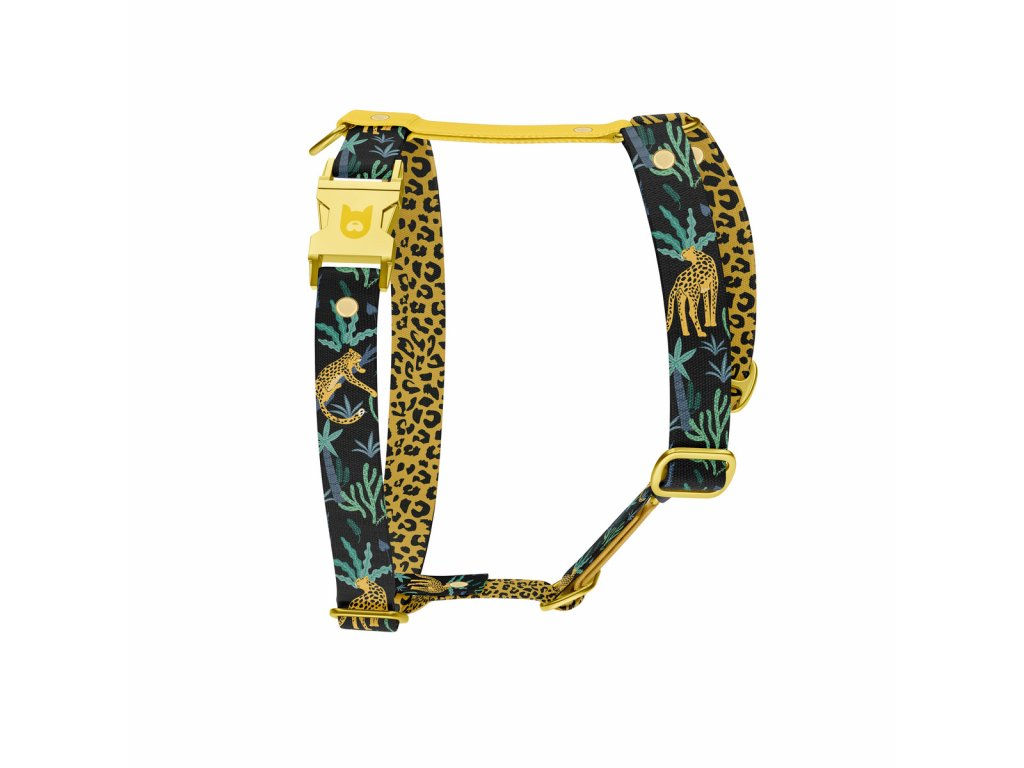 hharness jaguar