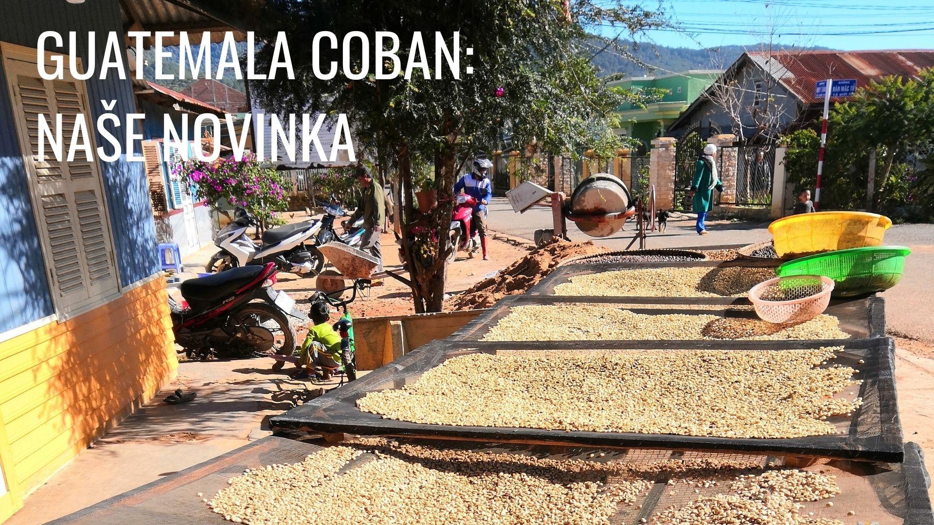 Guatemala Coban: naše novinka