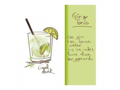Obraz Gin 30 x 30 cm Doleo.cz