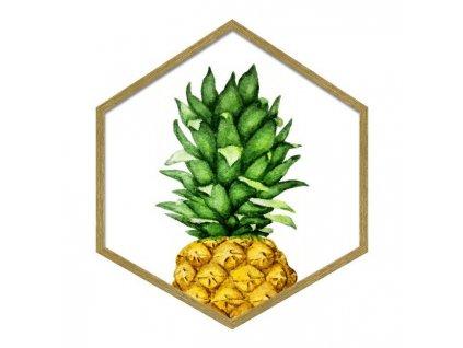Obraz Hexagon Ananas 35 x 40 cm Doleo.cz