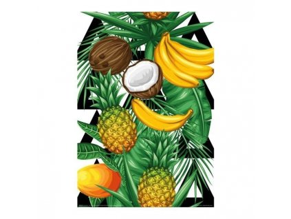 Obraz Jungle Fruits 28 x 40 cm Doleo.cz