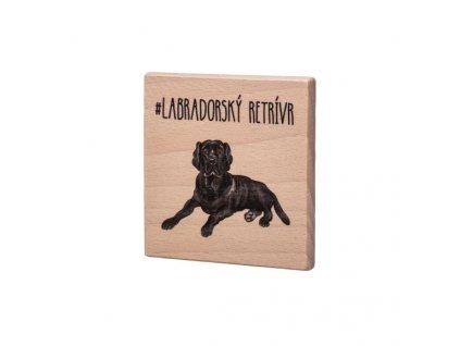 Dřevěný podtácek - Labradorský retrívr