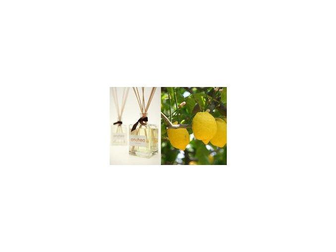 Vonné tyčinky White tea ve skleněném difuzéru 400 ml