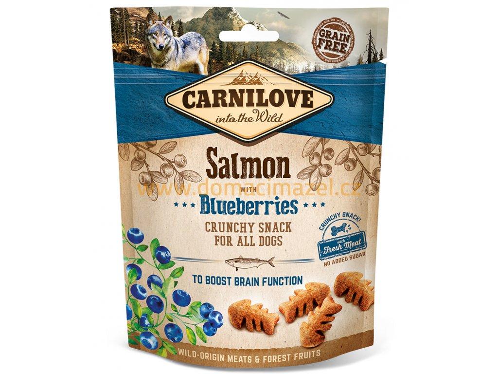 dog snacks salmon blueberries 200g 3d