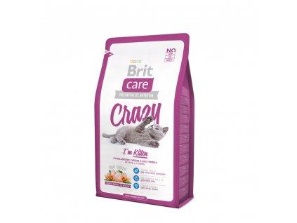 brit care cat crazy i m kitten