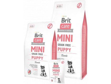britcaremini puppy