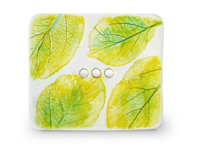 Mýdlenka listy zelené