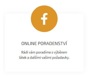 Online poradenství