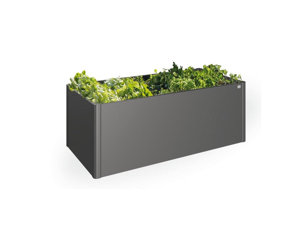 ikona zelenina
