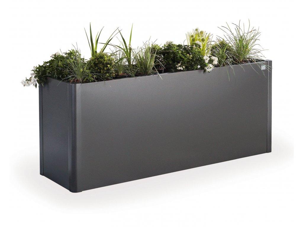 65922 Pflanzbeet Belvedere M dunkelgrau met mit Pflanzen Studio