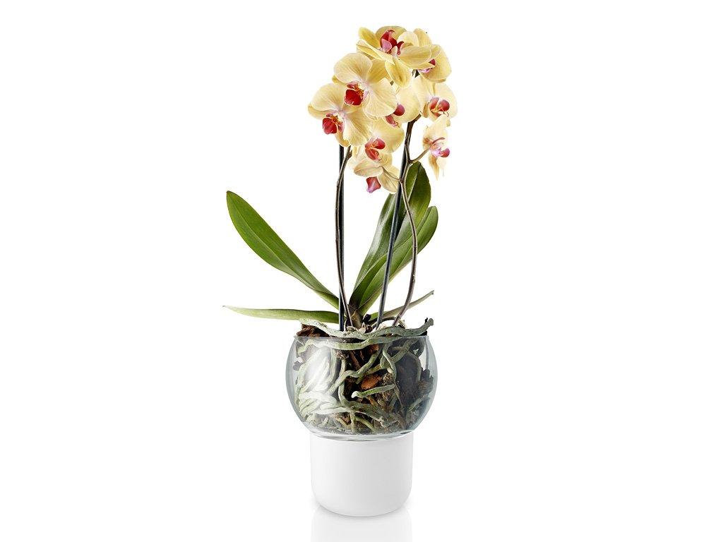 Skleněný samozavlažovací květináč na orchideje Ø 15 cm, Eva Solo