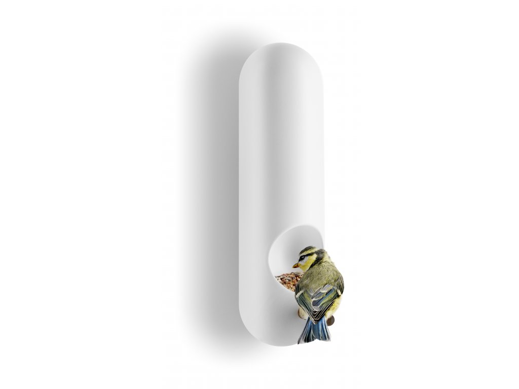 571006 Bird feeder tube wall mounted vinkel regi bird aRGB High