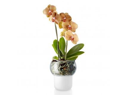 Skleněný samozavlažovací květináč na orchideje Ø 13 cm, Eva Solo