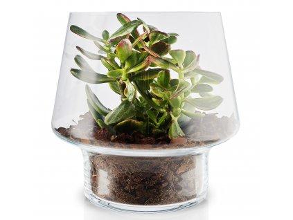 Skleněná váza na sukulenty 21 cm Eva Solo