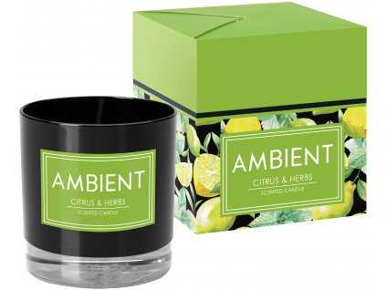 bispol ambient citrus and herbs 1