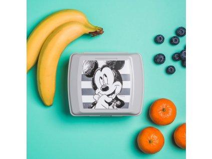 Svačinový box Mickey Stripes 14,5 x 13 cm DISNEY / AMBITION