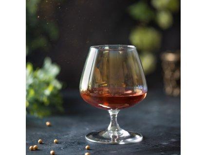Sada 2 sklenic na koňak Celeste Golden Chameleon 410 ml LUMINARC