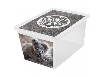 Box s víkem X Box Deco Koala 30 l BRANQ