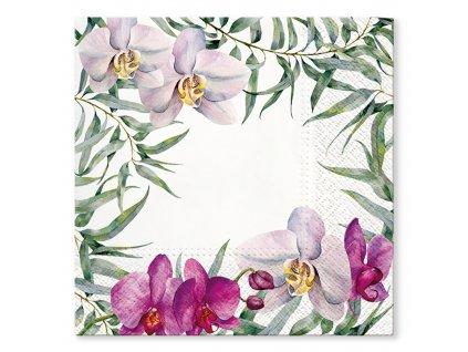 Sada 20 ubrousků Orchid 33 x 33 cm PAW
