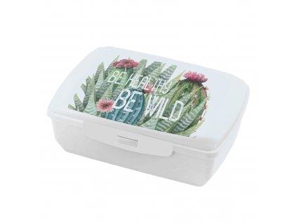 Lunchbox Cactus 1,35 l AMBITION