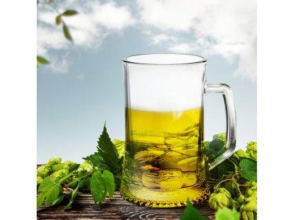 Cejchovaná sklenice na pivo Dresden 330 ml ARCOROC