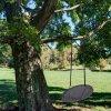 Zahradní houpačka čapí hnízdo 100 cm D029-06TB PATIO