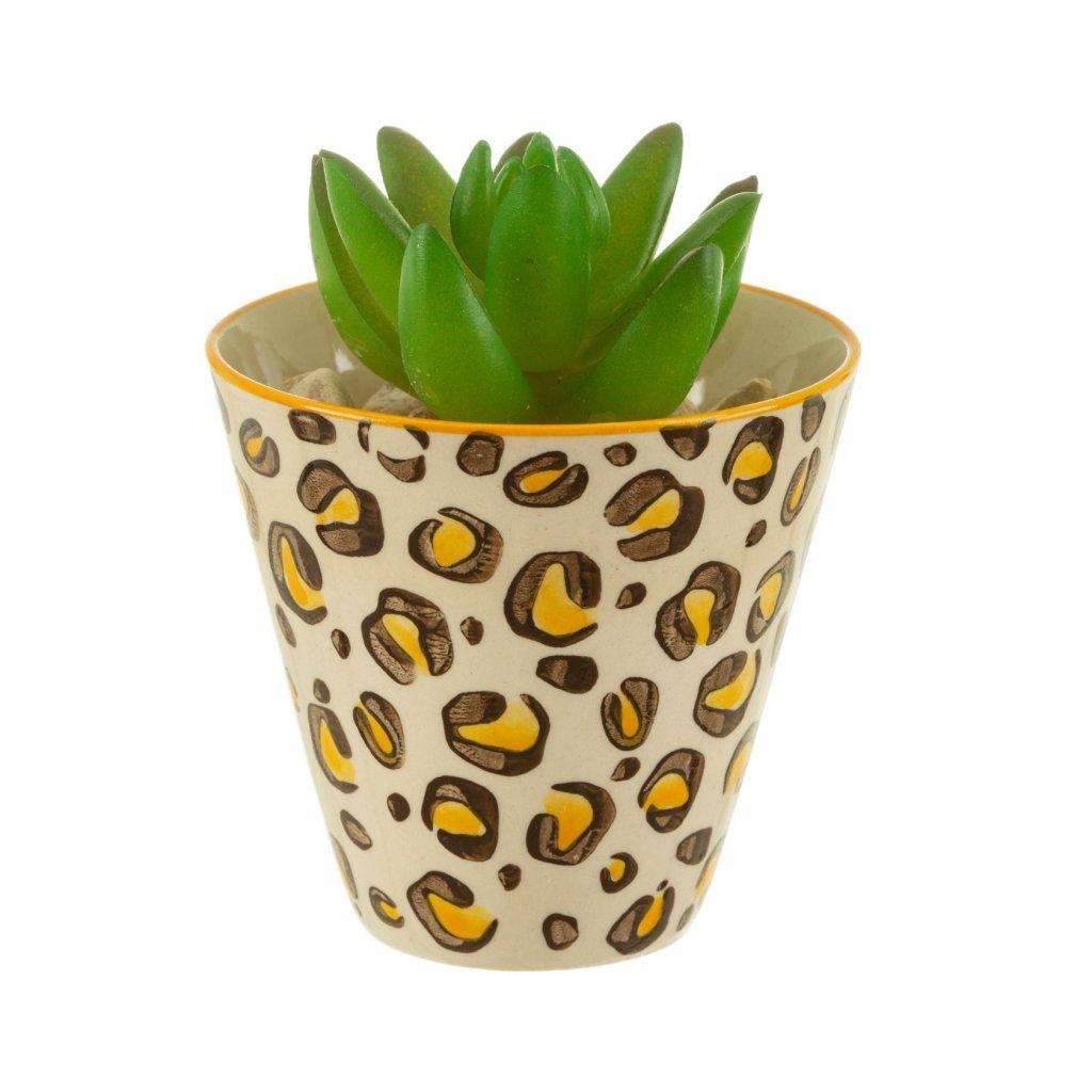 5918 5 iris029 b mini leopard love planter lifestyle (1)