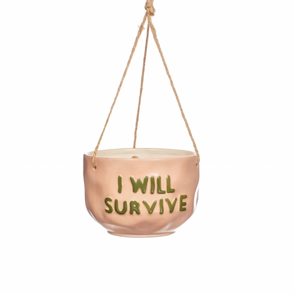 XC434 A I Will Survive Hanging Planter