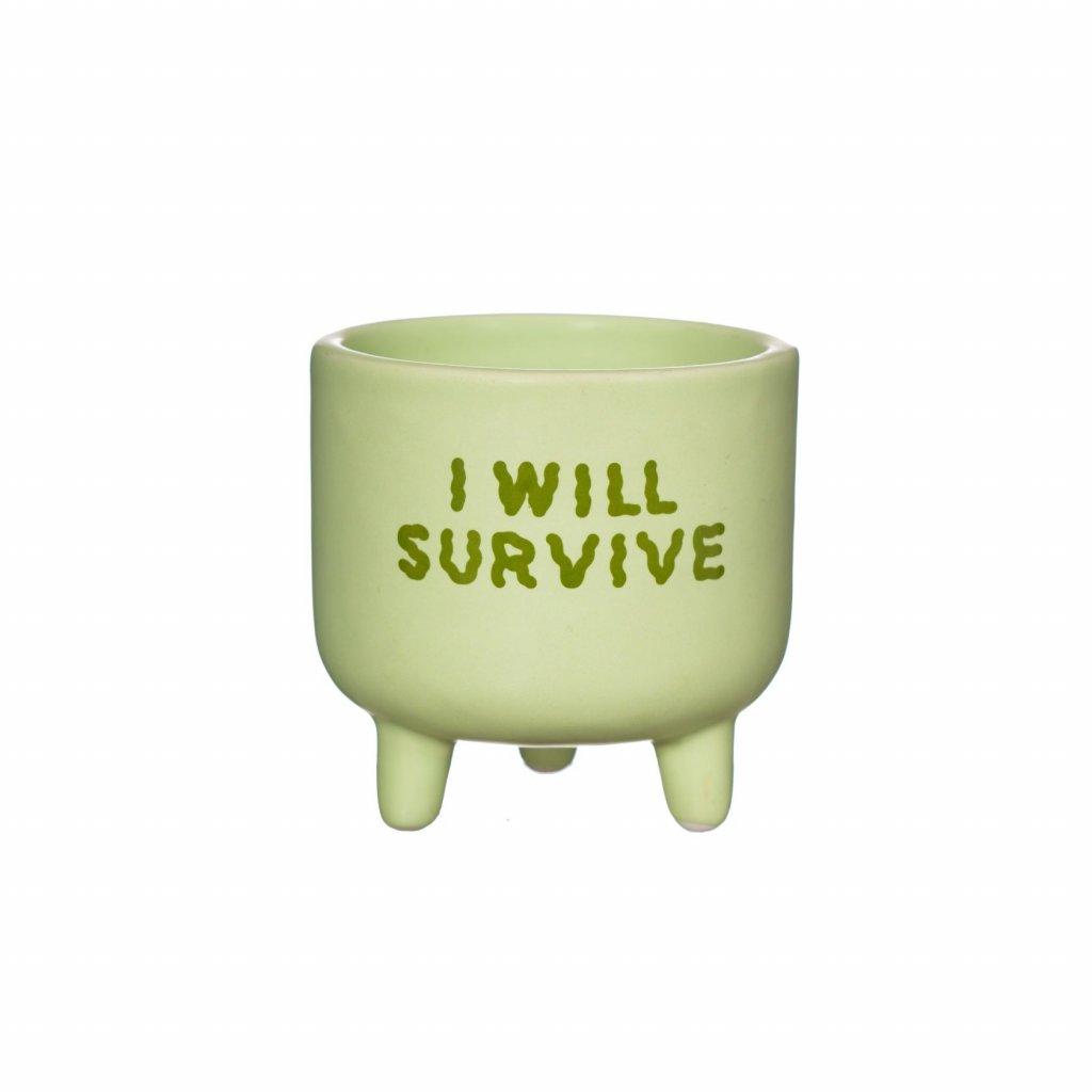 XC431 A I WIll Survive Mini Planter