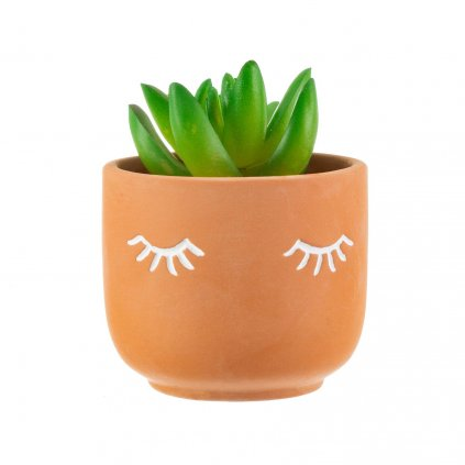 4955 3 ten019 b mii eyes shut terracotta planter lifestyle