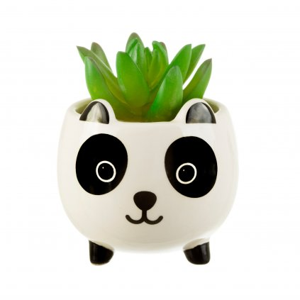 XDC368 B Mini Panda Planter Lifestyle