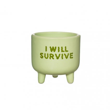 XC431 A I WIll Survive Mini Planter