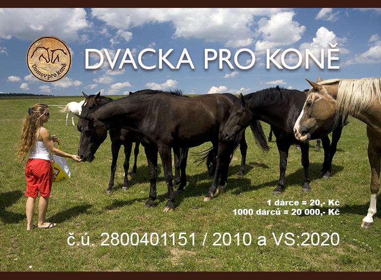 Stav Dvacky pro koně k 30.6.2017