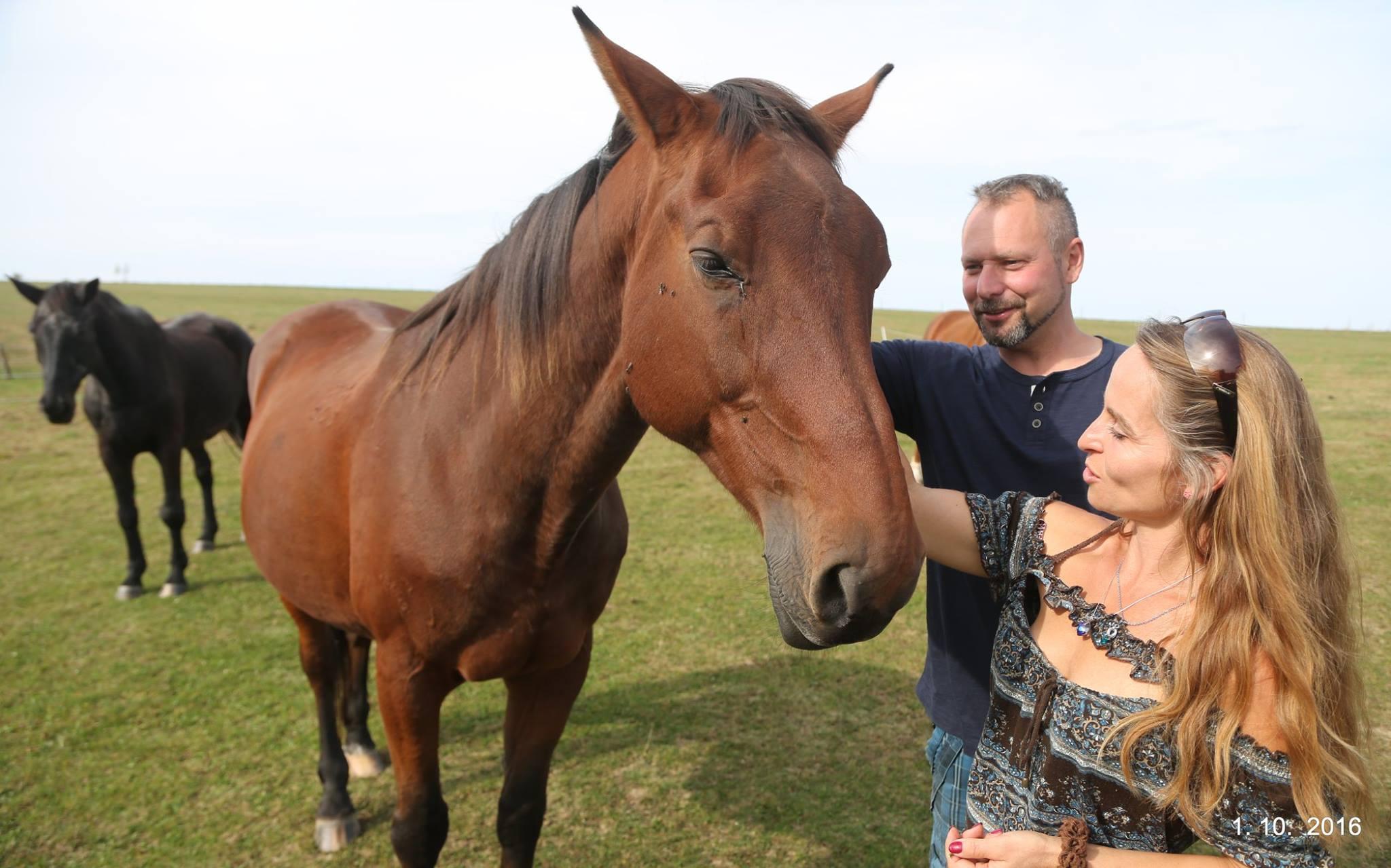 Domov pro koně - Kdo jsme?