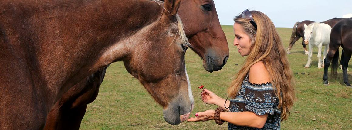 Domov pro koně - Patricie o koně pečuje dnem i nocí