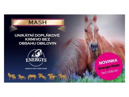 17951 1 mash