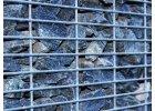 Gabionové stěny - 10x2,5