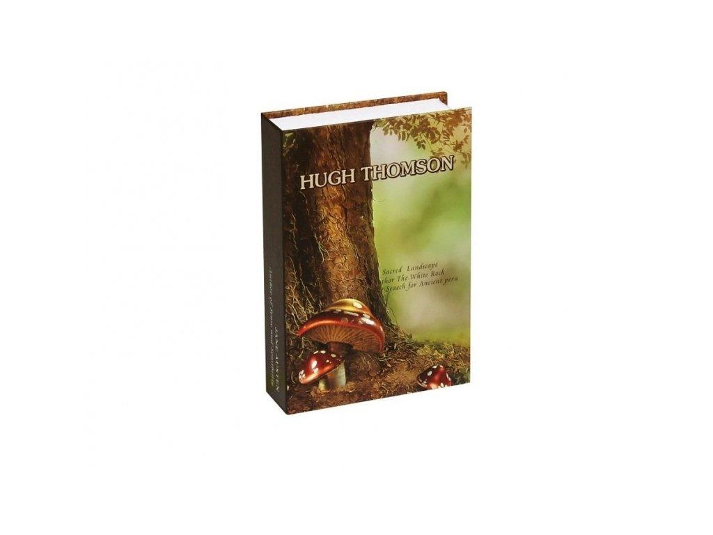 Bezpečnostní schránka kniha - HUGH THOMSON