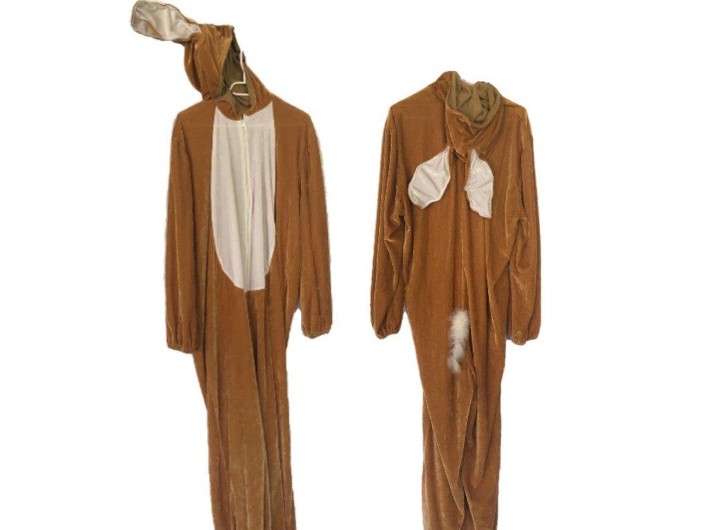 zajac kostým prenájom