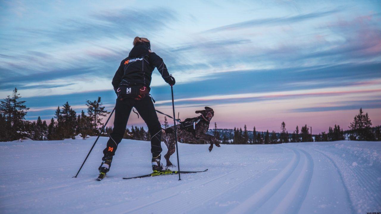 LOYPE BELT - lyžařský sedák