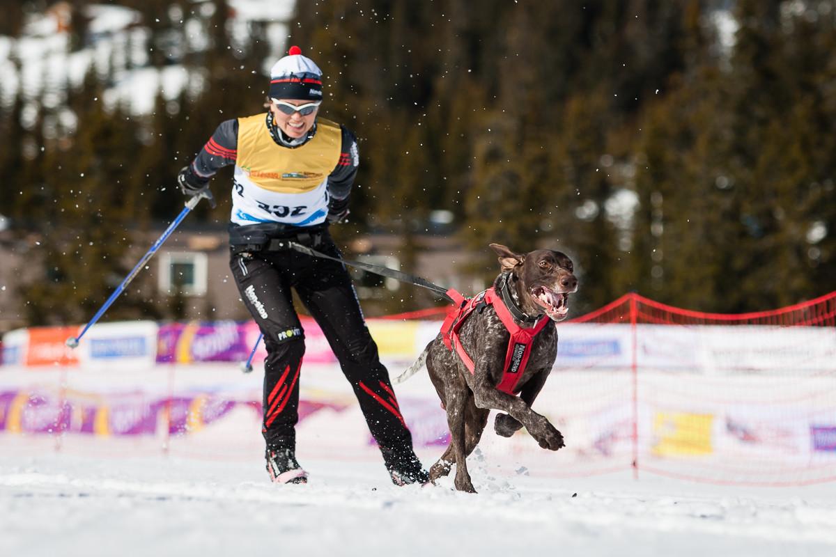 skijoring-na-bezky-se-psem-non-stop-dogwear-01