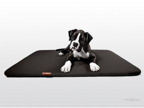 Matrace pro psy DOOOP Slim - rozměr 100 x 100